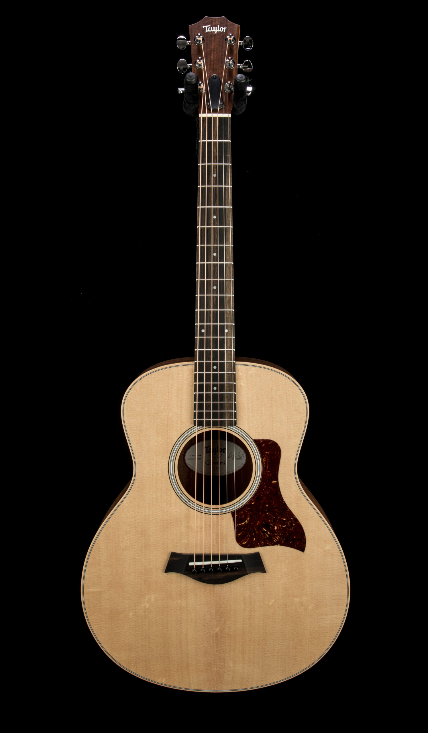 Taylor GS Mini Rosewood #2203191228 Front