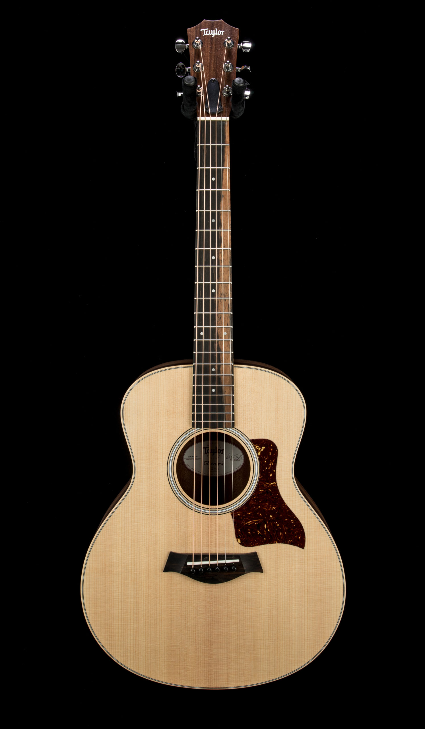Taylor Gs Mini Rosewood #2203011107 Front