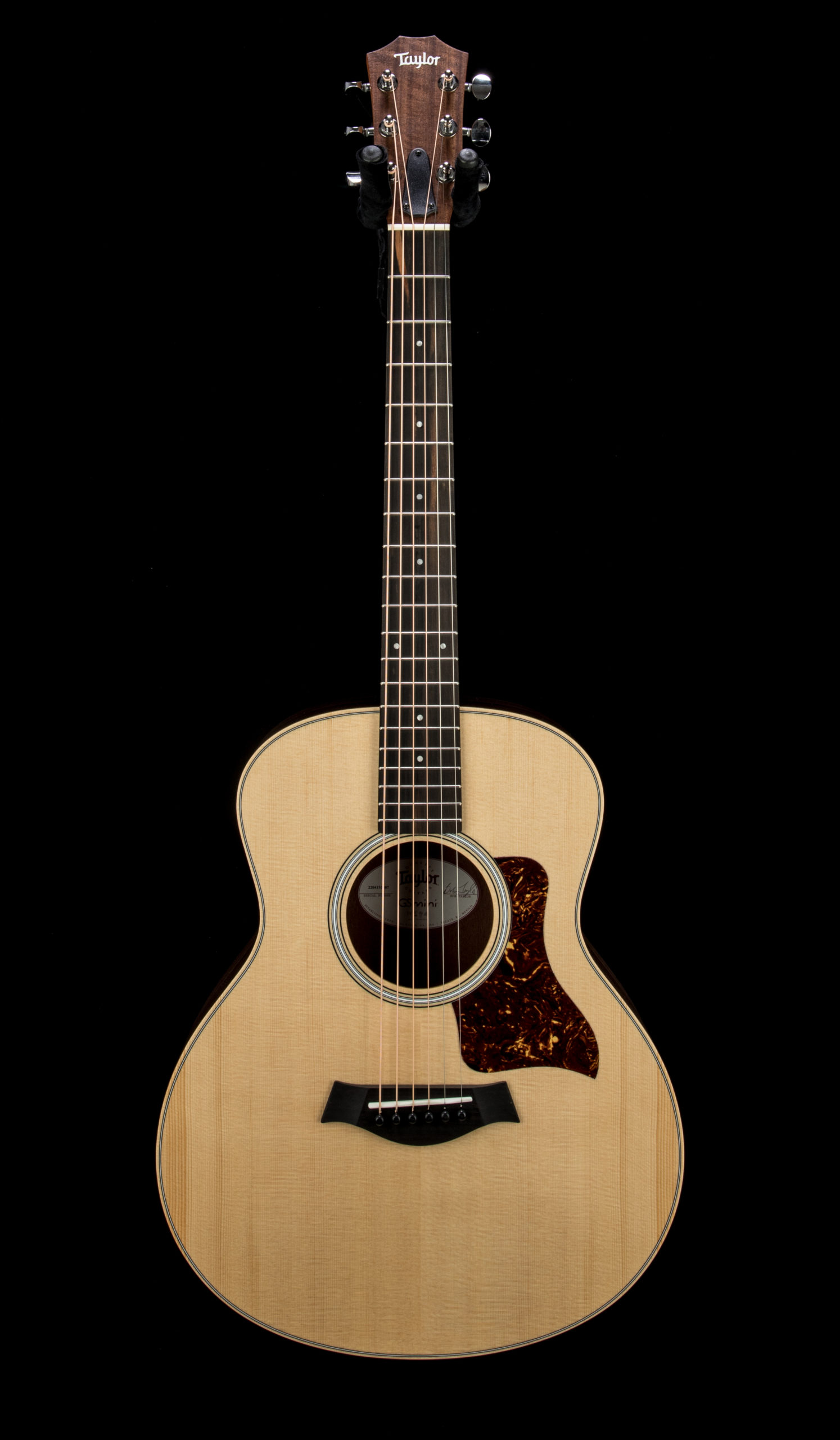 Taylor GS Mini Rosewood #2204151407 Front