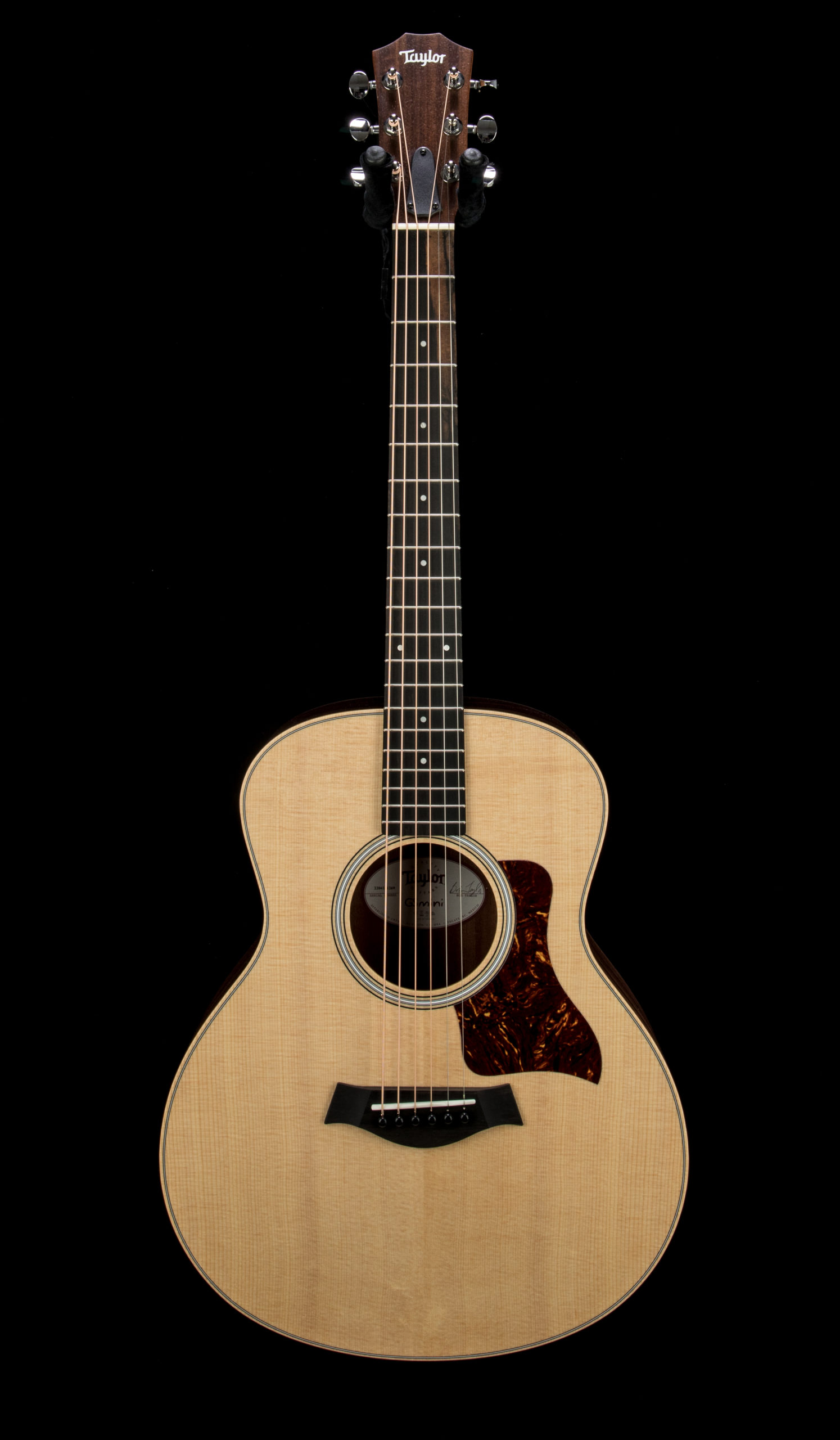 Taylor GS Mini Rosewood #2204181269 Front