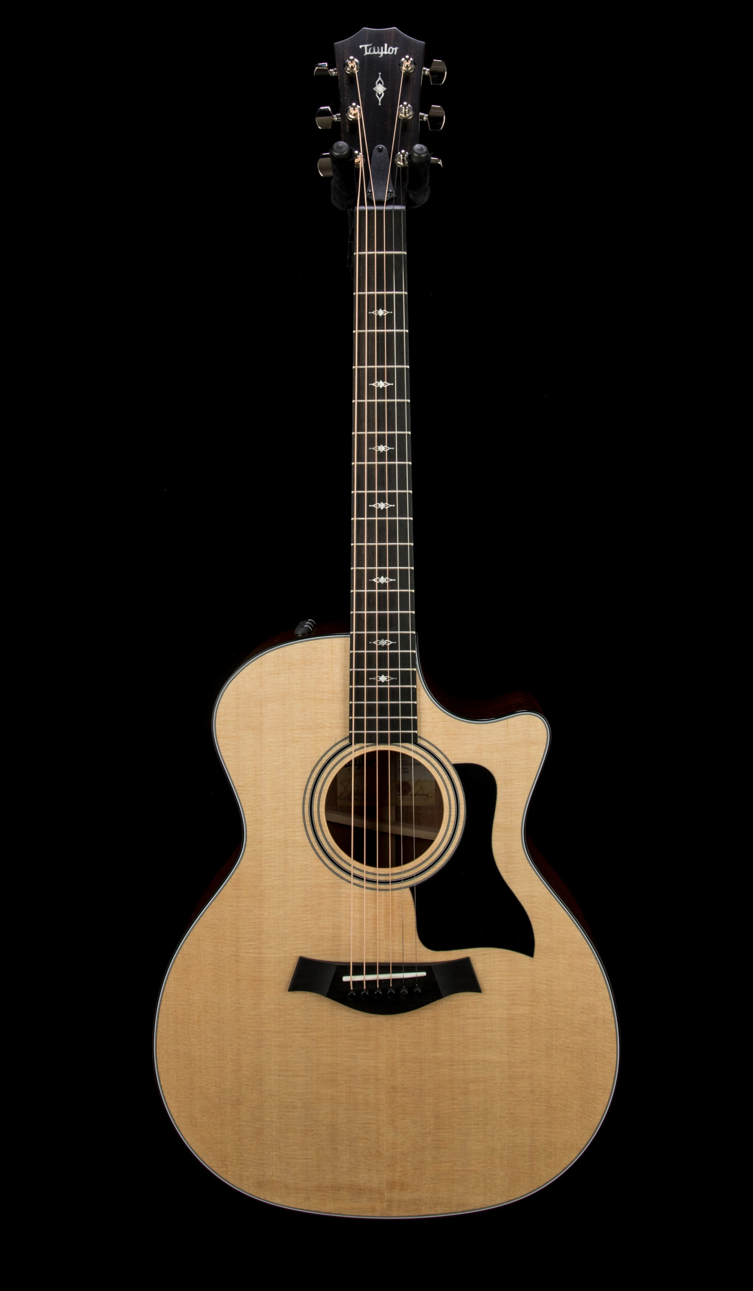 Taylor 314ce #1205191048 Front