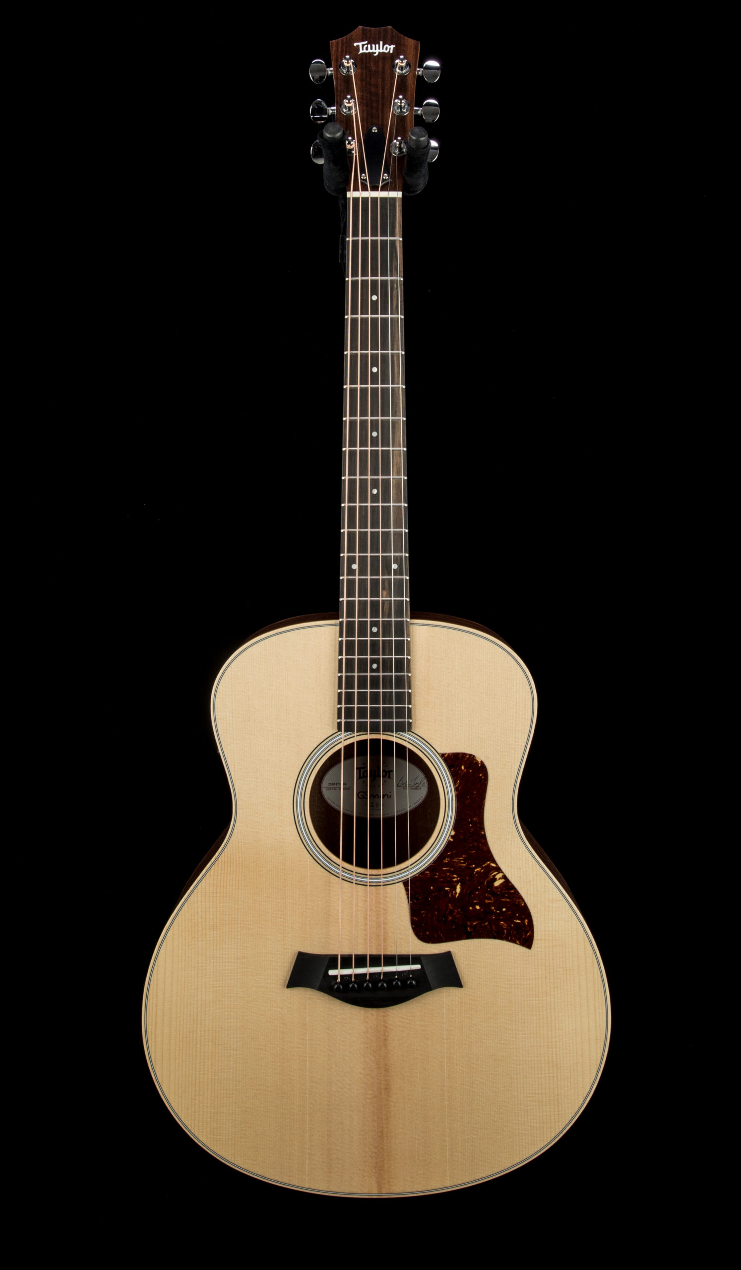 Taylor GS Mini e Rosewood #22031771246 Front