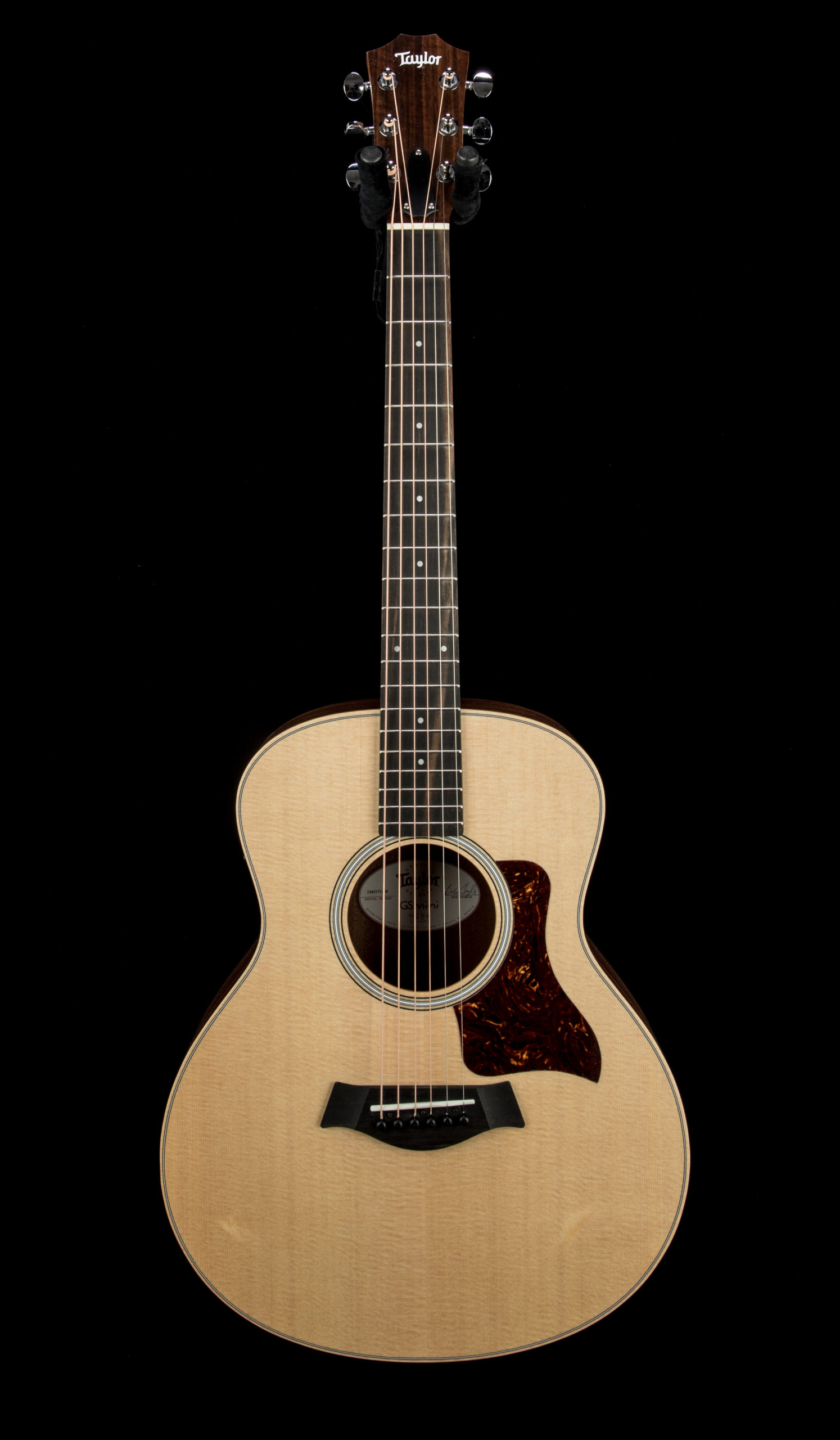 Taylor GS Mini e Rosewood #2203171248 Front
