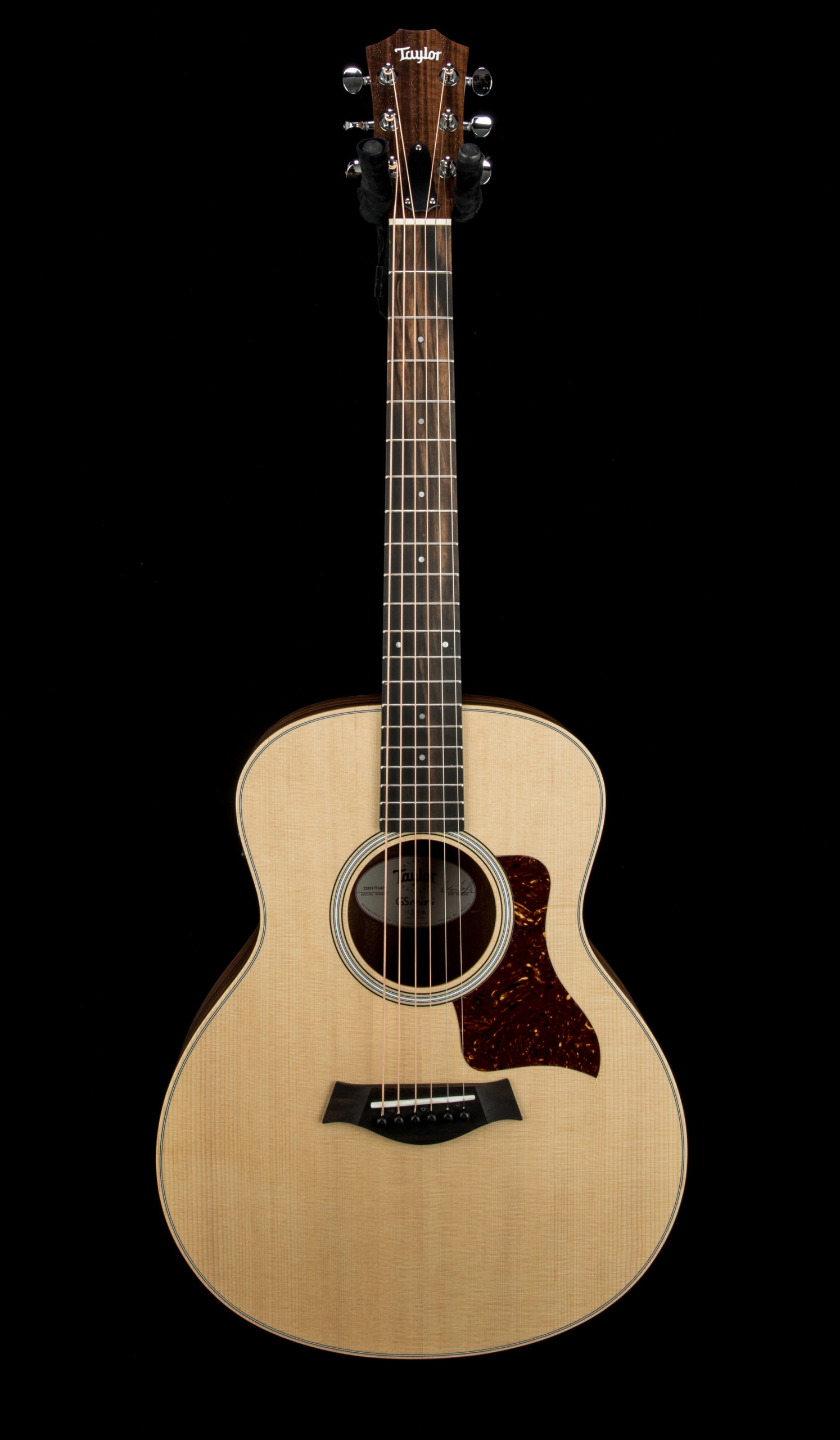 Taylor GS Mini e Rosewood #2203171242 Front