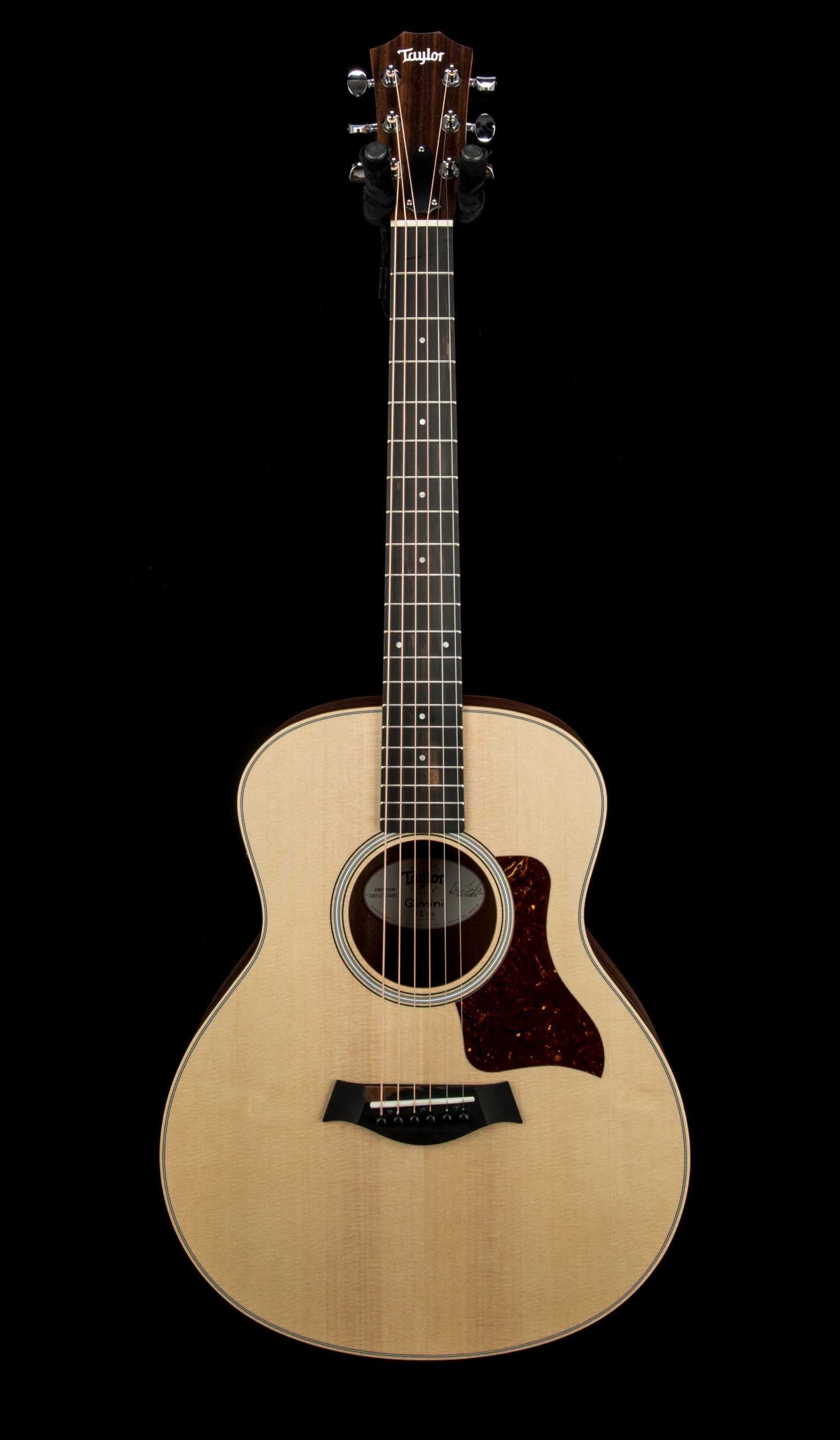 Taylor GS Mini e Rosewood #2203171249 Front