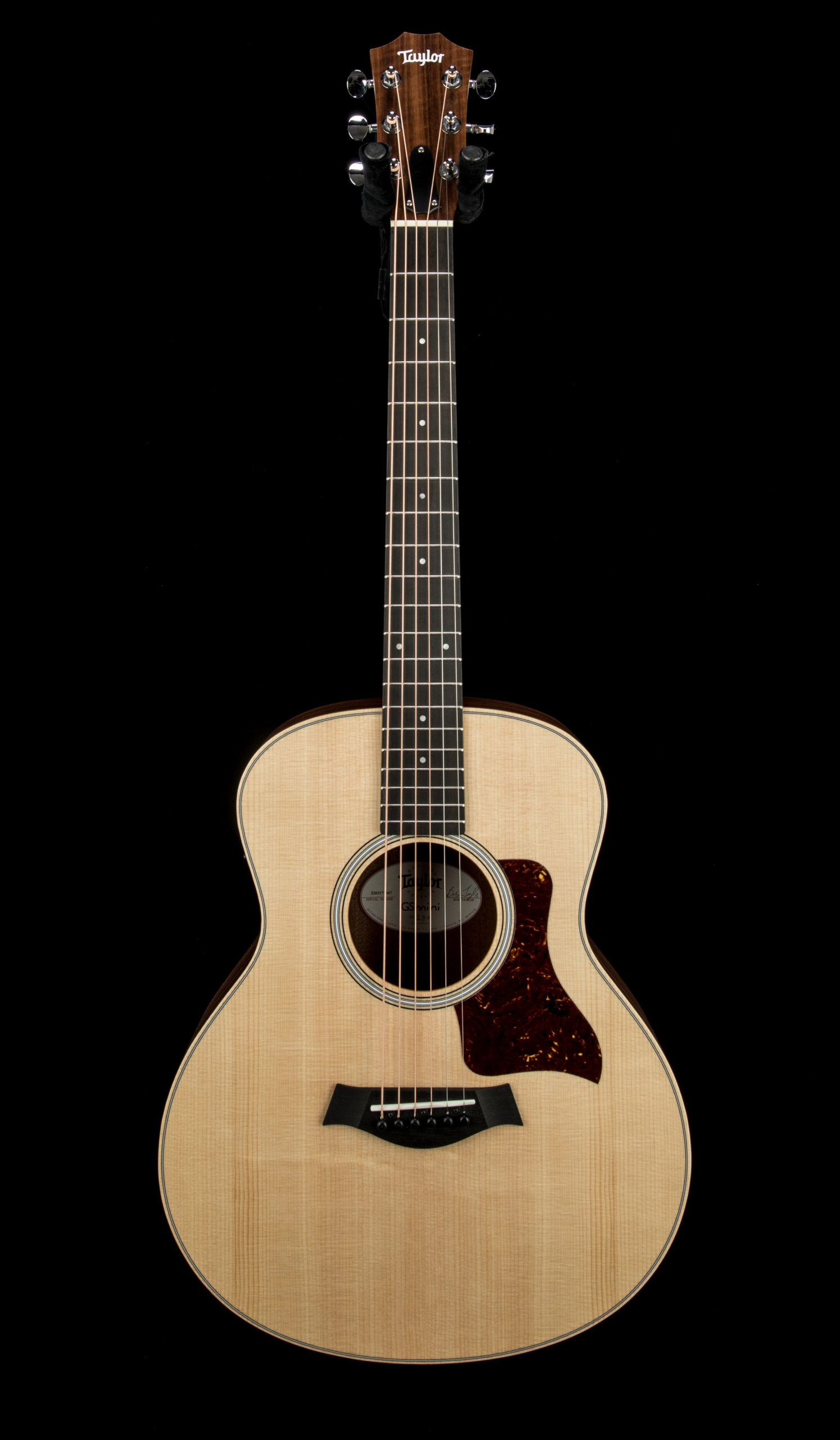 Taylor GS Mini e Rosewood #2203171247 Front