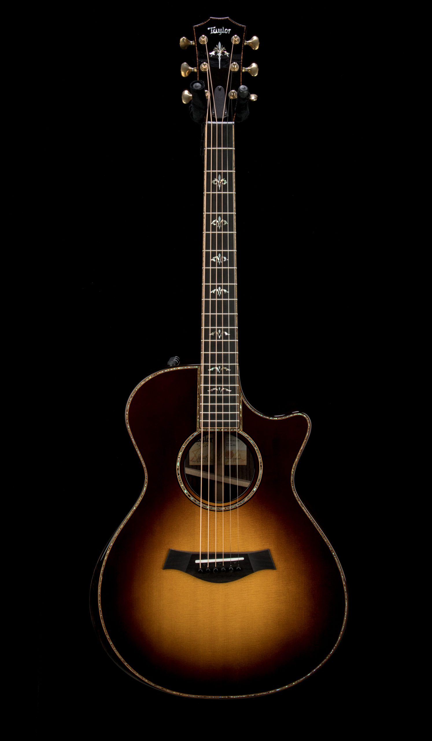 Taylor 912ce SB #1206141154 Front