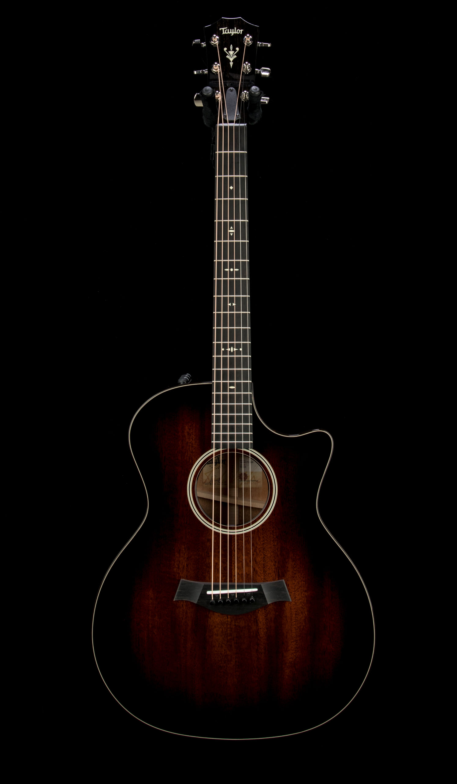 Taylor 524ce #1206171083 Front
