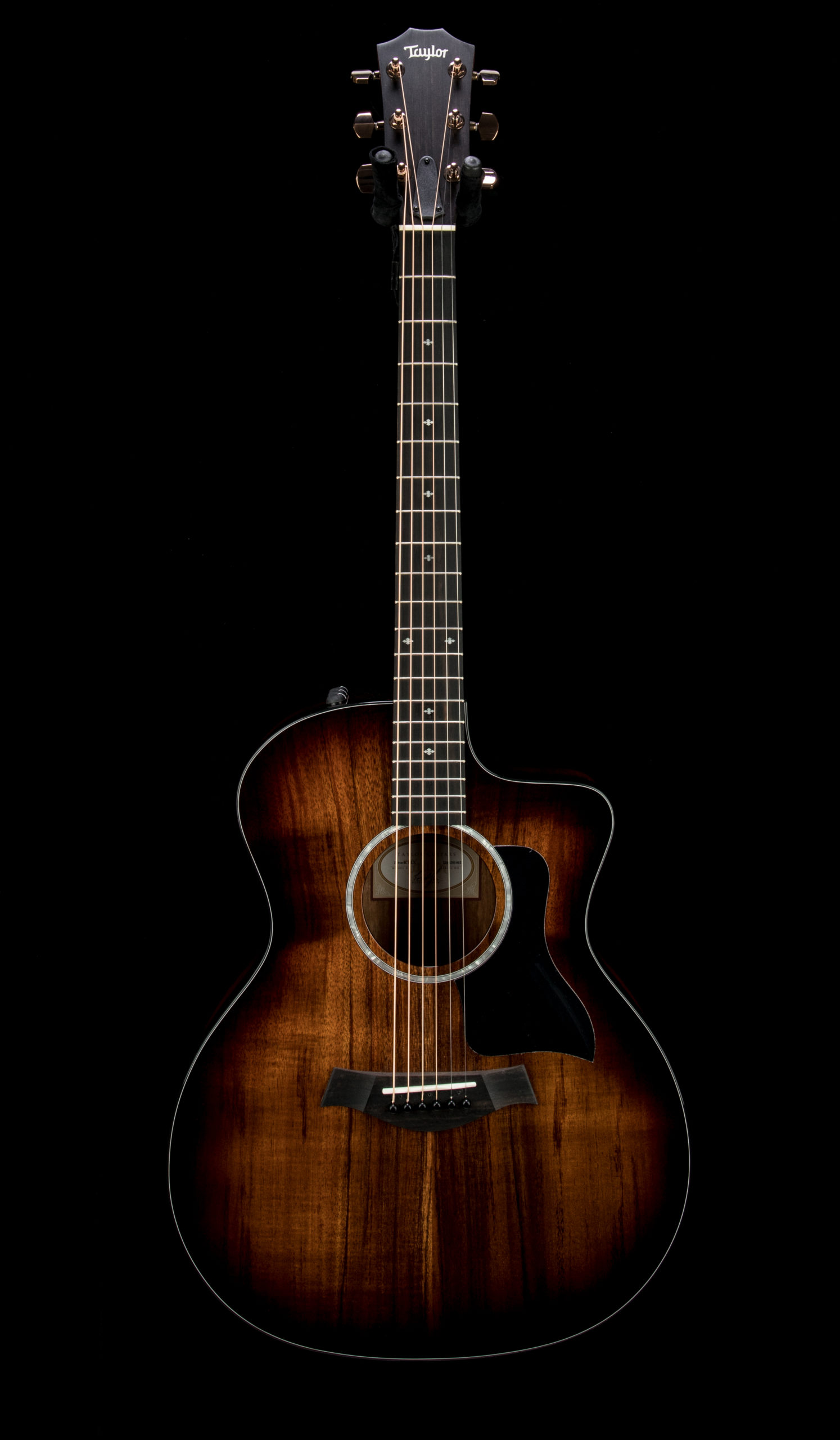Taylor Factory Used 224ce K DLX #2206201402 Front