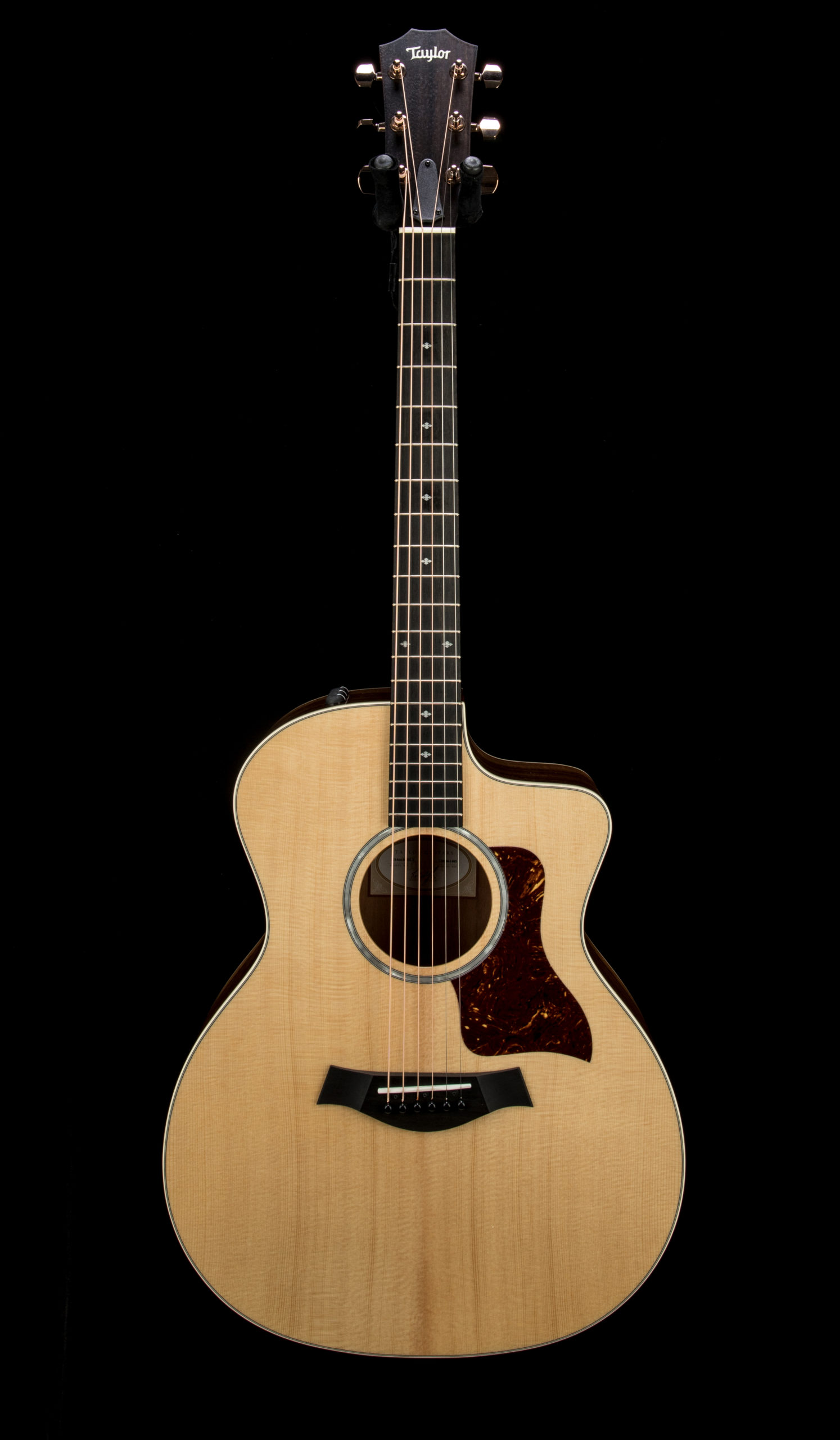 Taylor Factory Used 214ce K DLX #2206061405 Front