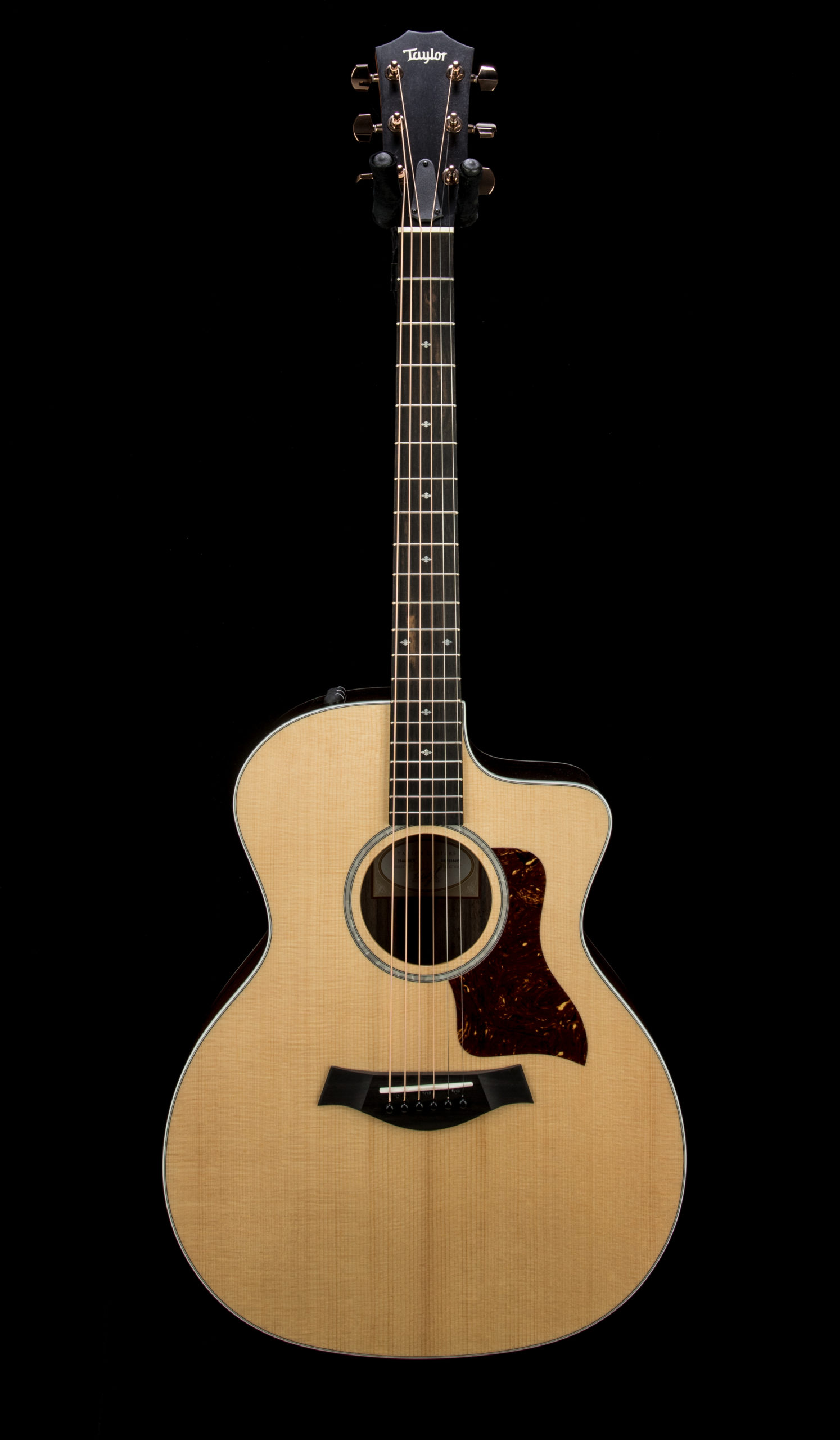 Taylor Factory Used 214ce DLX #2205121493 Front