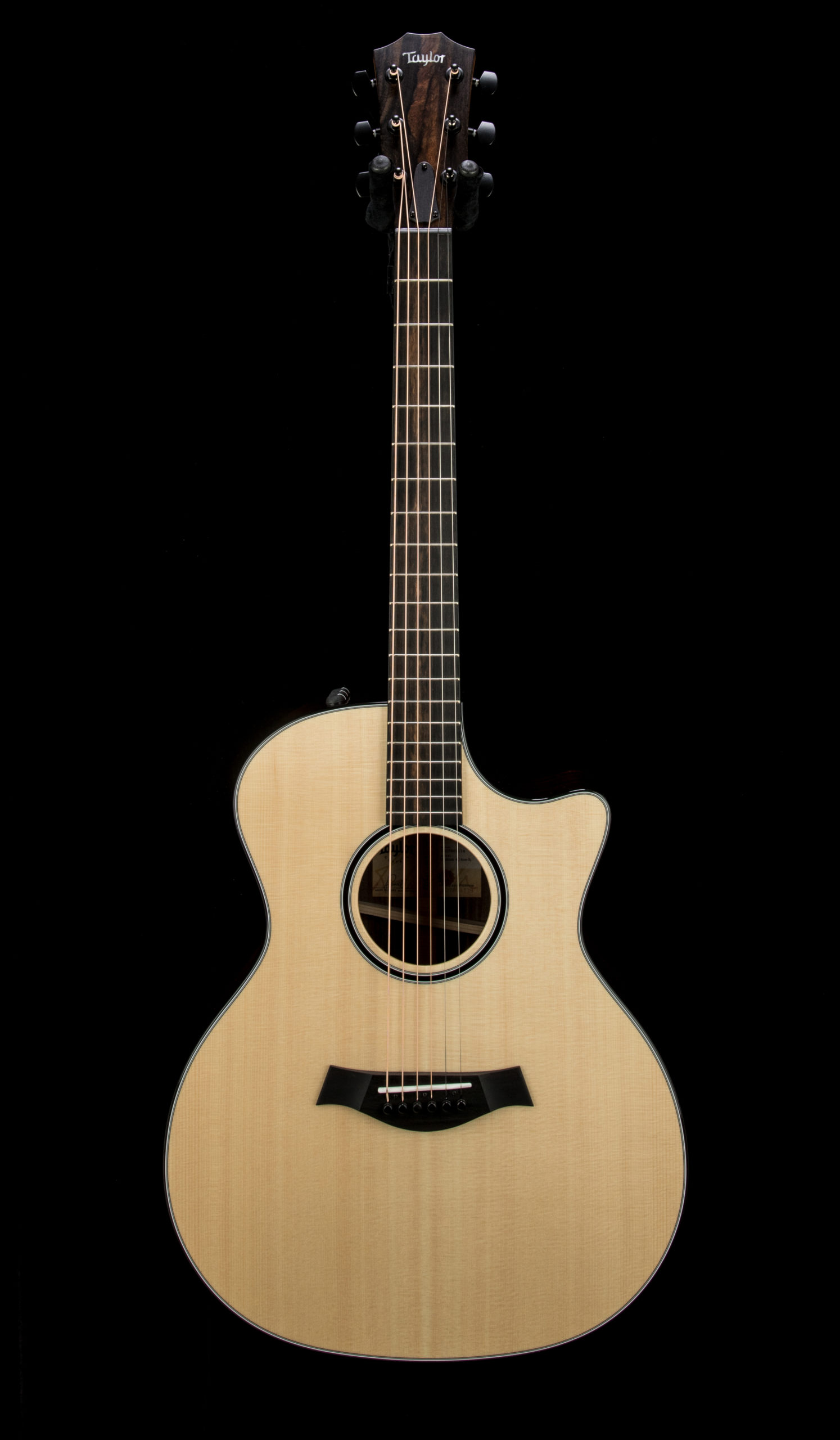 Taylor Empire Custom 414ce R #1207261114 Front