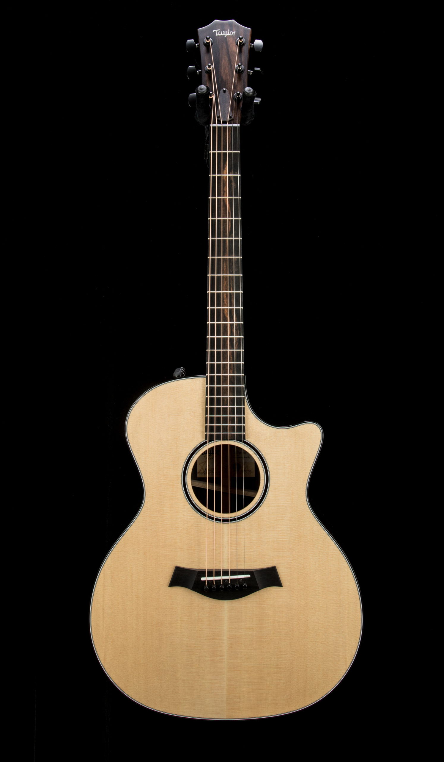 Taylor Empire Custom 414ce R #1207281019 Front