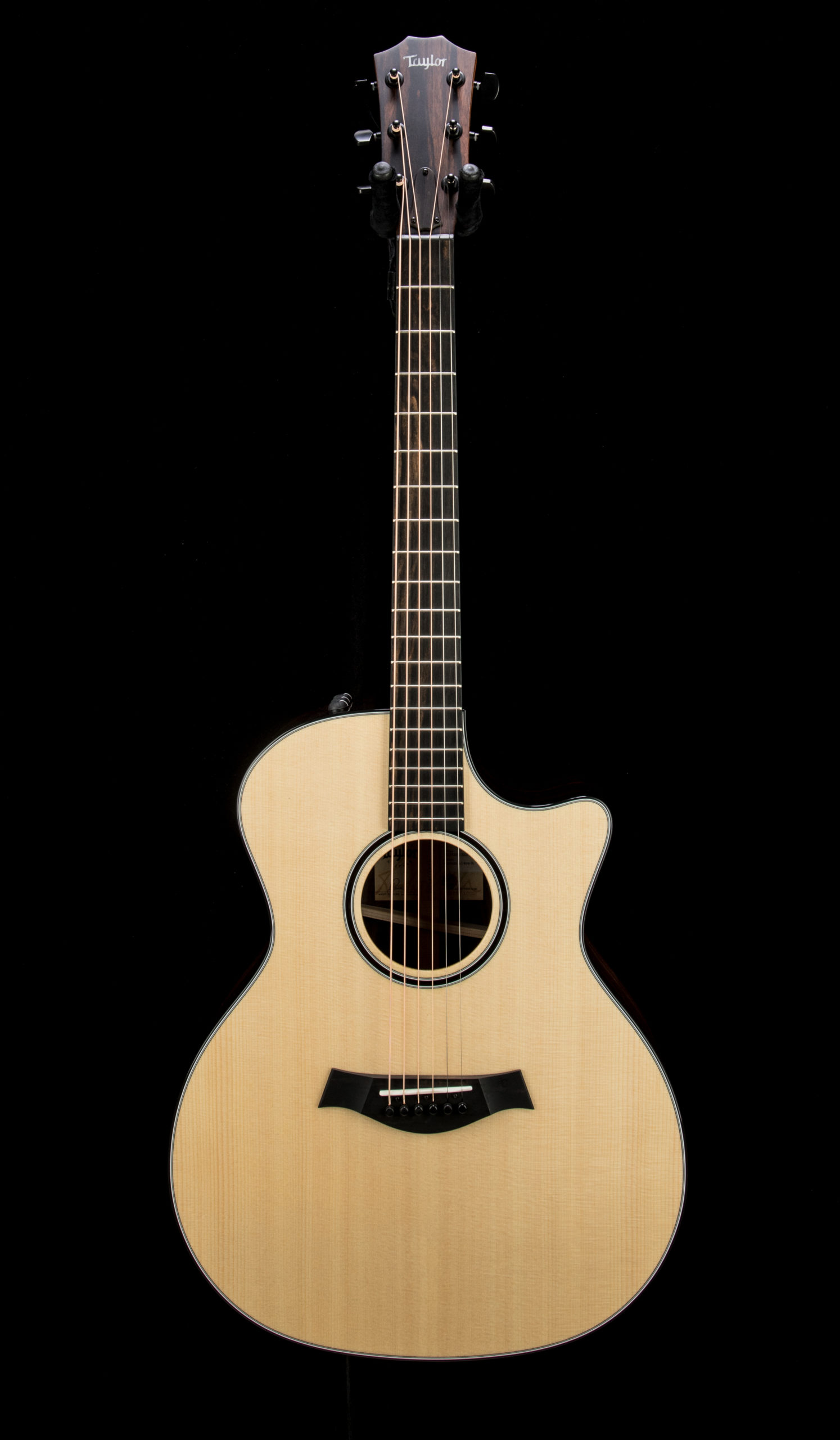 Taylor Empire Custom 414ce R #1207281022 Front