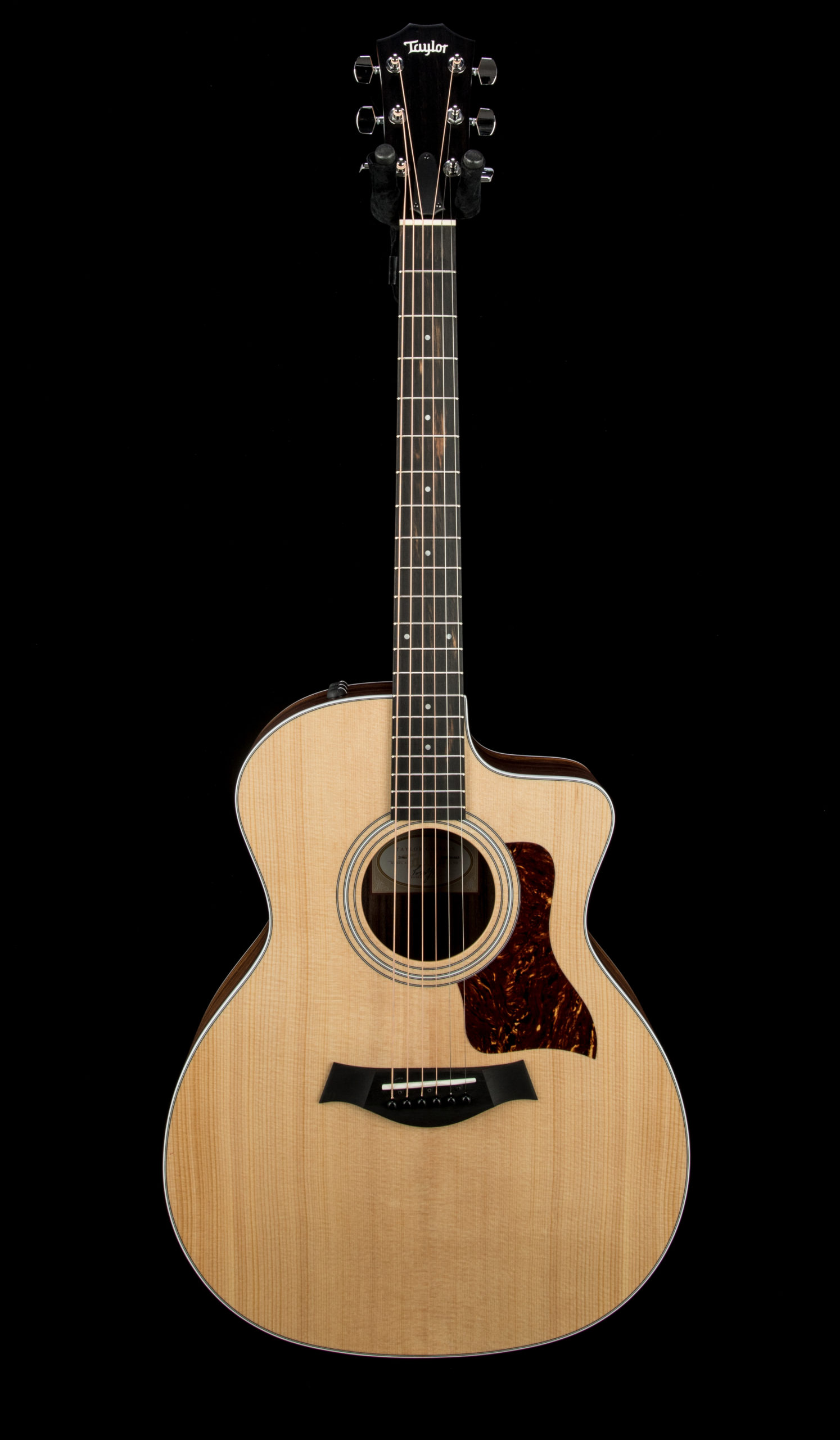 Taylor 214ce #2208201463 Front