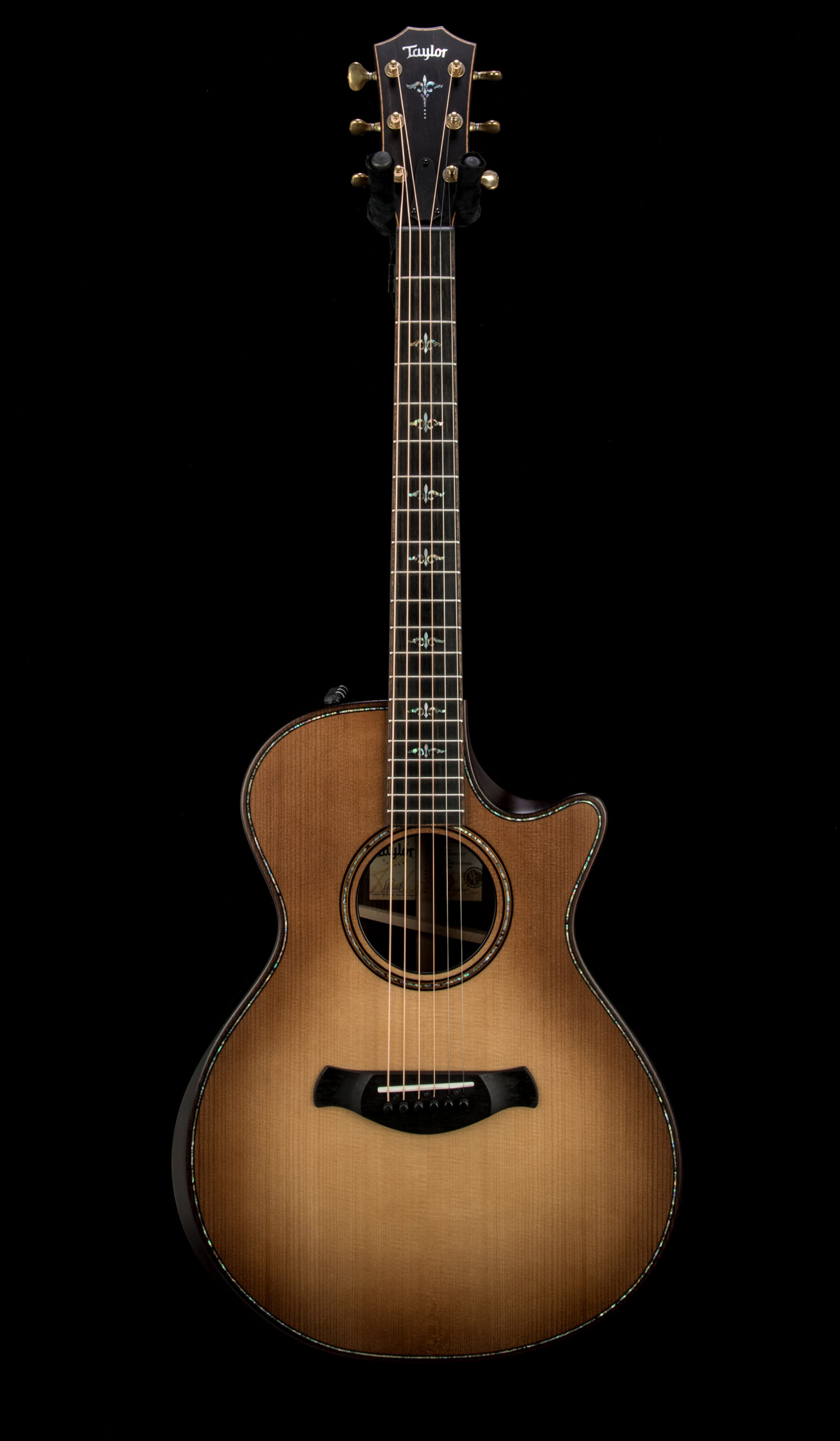 05 Taylor 912ce Builders Edition #1209081127 Front