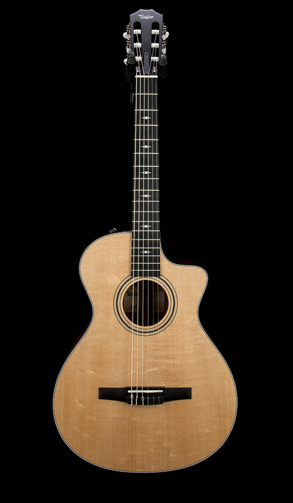 Taylor 312ce-N #1208311046 front